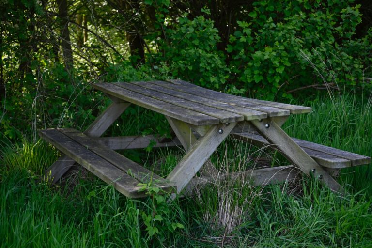Sitzgelegenheit in der Natur